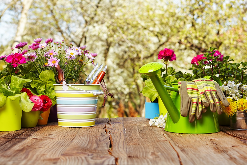 How your garden can help you sell your home...
